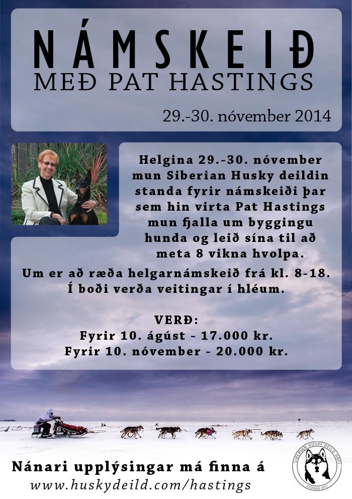 pat-hastings01_2014_700px